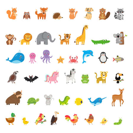 Big set of different animals and birds in cartoon style. Vector illustration on isolated white background.