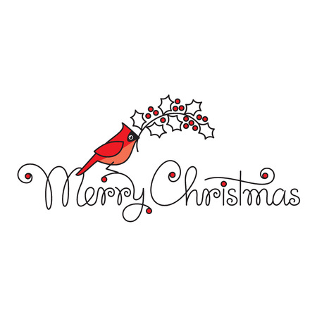robin bird: Merry christmas hand lettering with red robin bird and branch