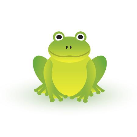 rana: Pequeña rana verde sobre fondo blanco Vectores