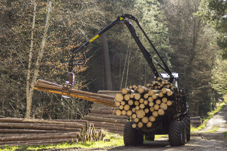 timber harvesting: Special tractors for processing of harvested timber in the forest