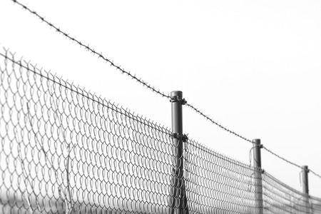 barbed wire fence: barbed wire over the fence