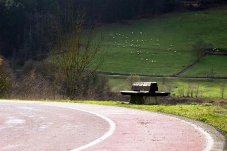 enviroment: bench in natural enviroment Stock Photo