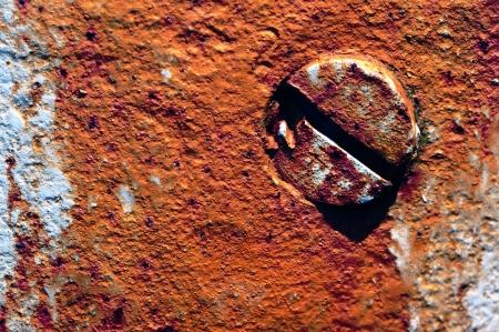 screw head in a grungy wall Standard-Bild