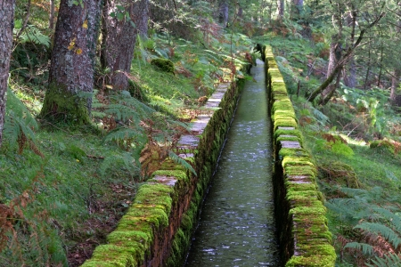 channeling: irrigation ditch for water channeling