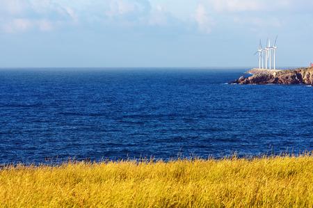 wind turbines on the sea on sunny day photo