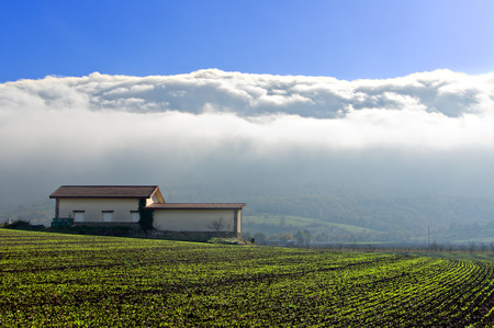 alava: farm with fog. Salvatierra, Alava, Basque Country. Stock Photo