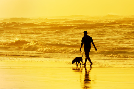 person walking the dog on the beach at sunset Stok Fotoğraf