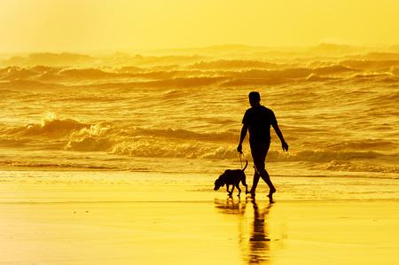 persoon het lopen van de hond op het strand bij zonsondergang