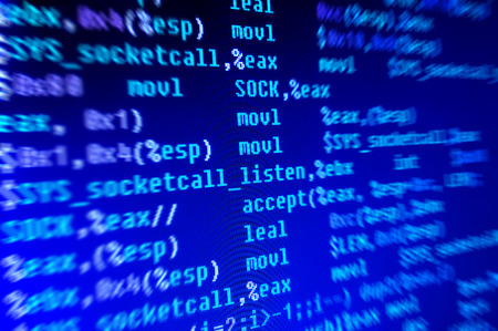 assembly language: Assembly programming language code in monitor