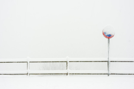 no parking sign: no parking sign in the snow Stock Photo