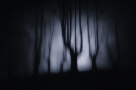 nightmare landscape with dark forest and scary trees at the night