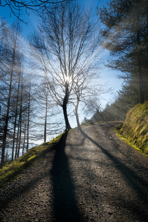 Percorso con bella luce solare in montagna Pagasarri