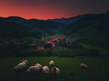 Arrazola village with sheep in Atxondo at the evening
