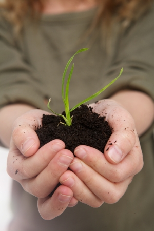 Child holding soil in hands with green plant growing photo