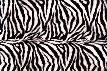 Horizontal striped zebra pattern with curves and lines photo