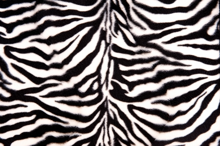 Black and white zebra pattern with stripes and curves Stock Photo