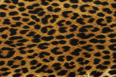 Close-up zwarte luipaard vlekken textuur ontwerp Stockfoto