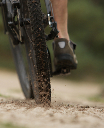 bike tire: Rear view low angle cyclist on dirt trail