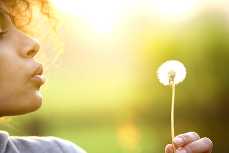 sun flowers: Close up portrait of a young woman blowing dandelion flower outdoors Stock Photo
