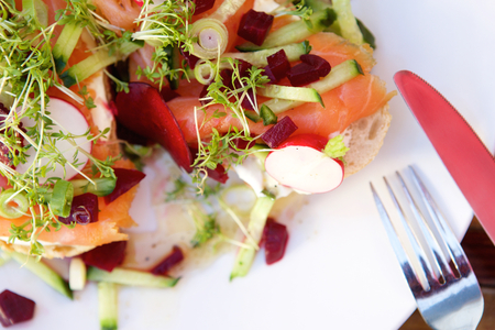 salmons: Close up fresh salad with  smoked salmon radish and beets