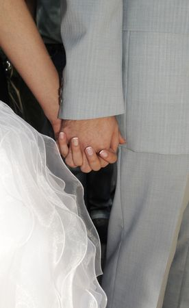 groom and bride holds each other hands Stock Photo - 3580952