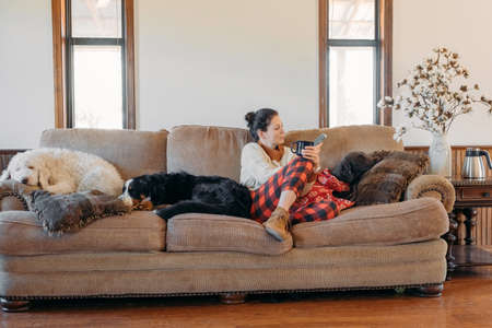 Young pretty woman in casual clothes sitting on the sofa with her pets dogs in the living room of her cozy country house. Animal communication and pets concept