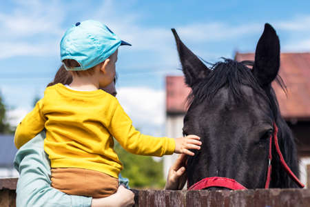 Child with mother stroking the horse.