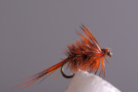nymphs: fly fishing