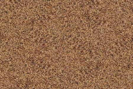 Seamless Texture Rice Paddy Seeds