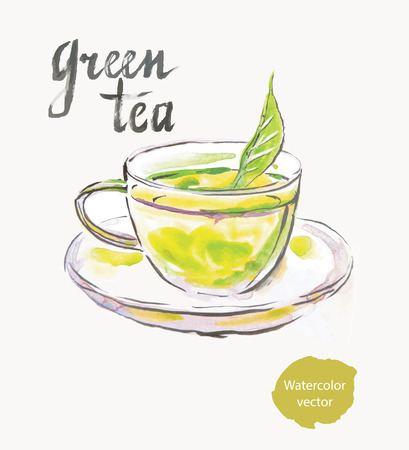 Green tea, watercolor, hand drawn, vector