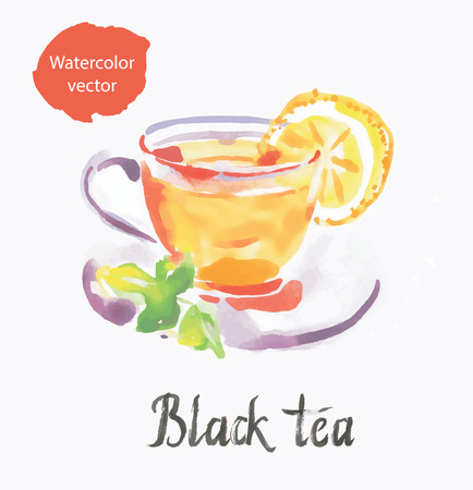 national fruit of china: Black tea, watercolor, vector, hand drawn