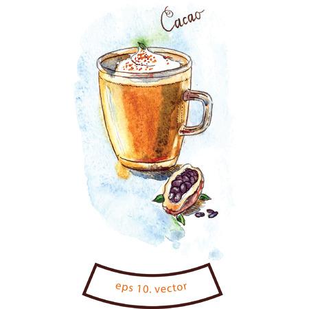 cacao: Cacao watercolor