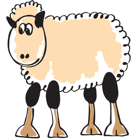 laughable: white sheep