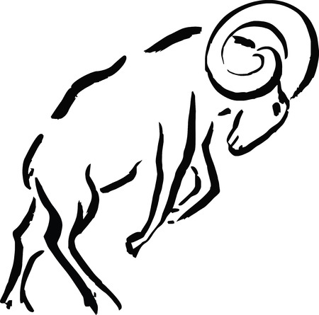 mutton: Mutton Illustration