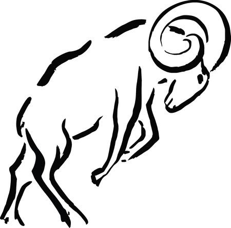Mutton Illustration