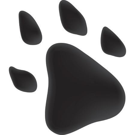 undomesticated: Trace dog