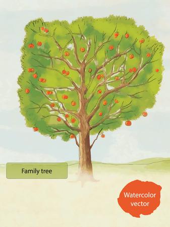arbol de manzanas: Vector dibujado mano del �rbol de la familia de la acuarela