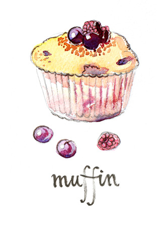 dewberry: Watercolor hand drawn muffin with fruits - Illustration Stock Photo