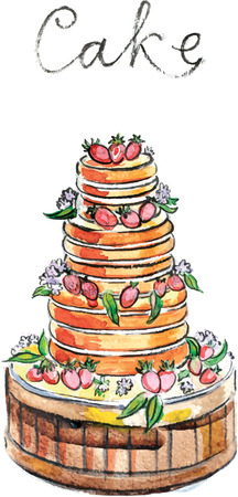 torte: Watercolor hand drawn torte (cake) - vector Illustration
