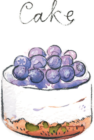 bilberry: Watercolor hand drawn cake with bilberry - vector Illustration