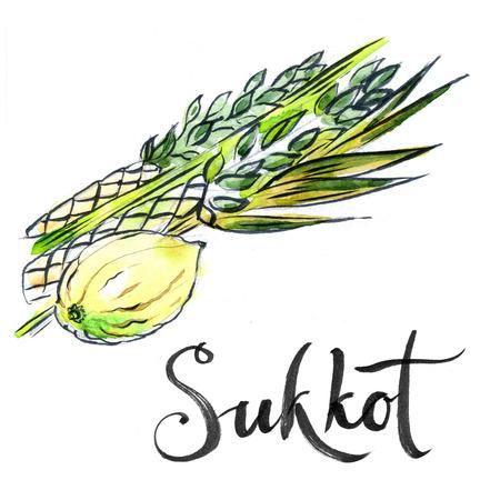 sukkoth festival: Watercolor lulav and etrog, Sukkot plants, Jewish holiday, hand drawn - Illustration Stock Photo