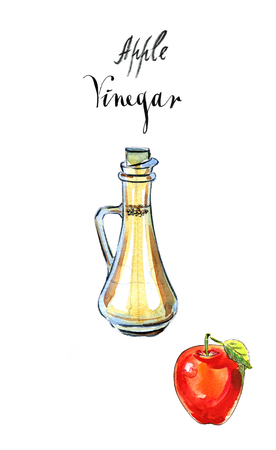 Decanter with vinegar and red apple, watercolor, hand drawn - Illustration Imagens