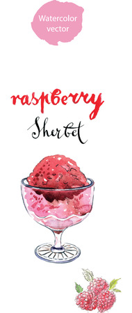 sherbet: Raspberry sherbet (sorbet), watercolor, hand drawn - vector Illustration Illustration