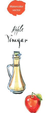 decanter: Decanter with vinegar and red apple, watercolor, hand drawn - vector Illustration