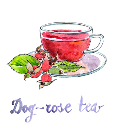 briar: Cup of briar tea with berries - Illustration
