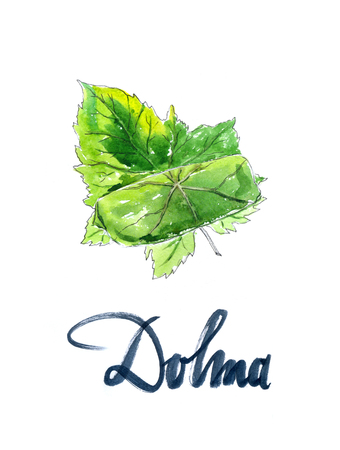 middle eastern food: Yaprak dolma, turkish cuisine, stuffed grape leaves, hand drawn, watercolor - Illustration