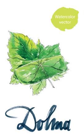 stuffed: Yaprak dolma, turkish cuisine, stuffed grape leaves, hand drawn, watercolor - Illustration