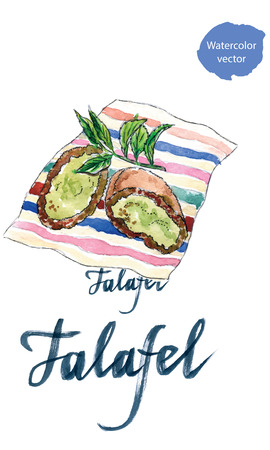 middle eastern food: Two half falafel chickpea balls, hand drawn, watercolor Illustration