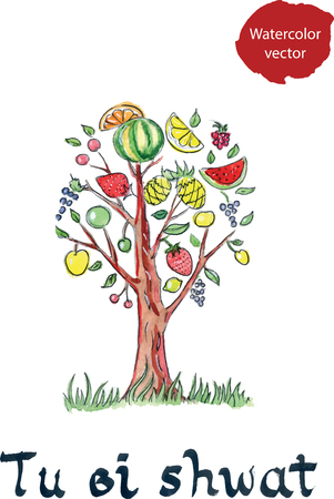 shvat: Tu bi shvat, Jewish New Year of trees, hand drawn, watercolor - vector Illustration