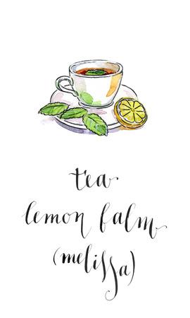 balm: Cup of tea with lemon and lemon balm (melissa), Healing herbal tea, watercolor, hand drawn - Illustration